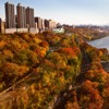 Bard Haven Towers, Columbia University Medical Center. New York City, NY, USA (Autumn time)