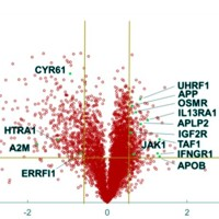Volcano plots of quantified, differentially expressed proteins in PanC1 cell lines